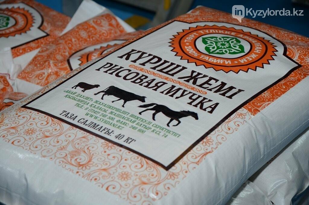 Открытие рисоперерабатывающего завода в Кызылорде, фото-3