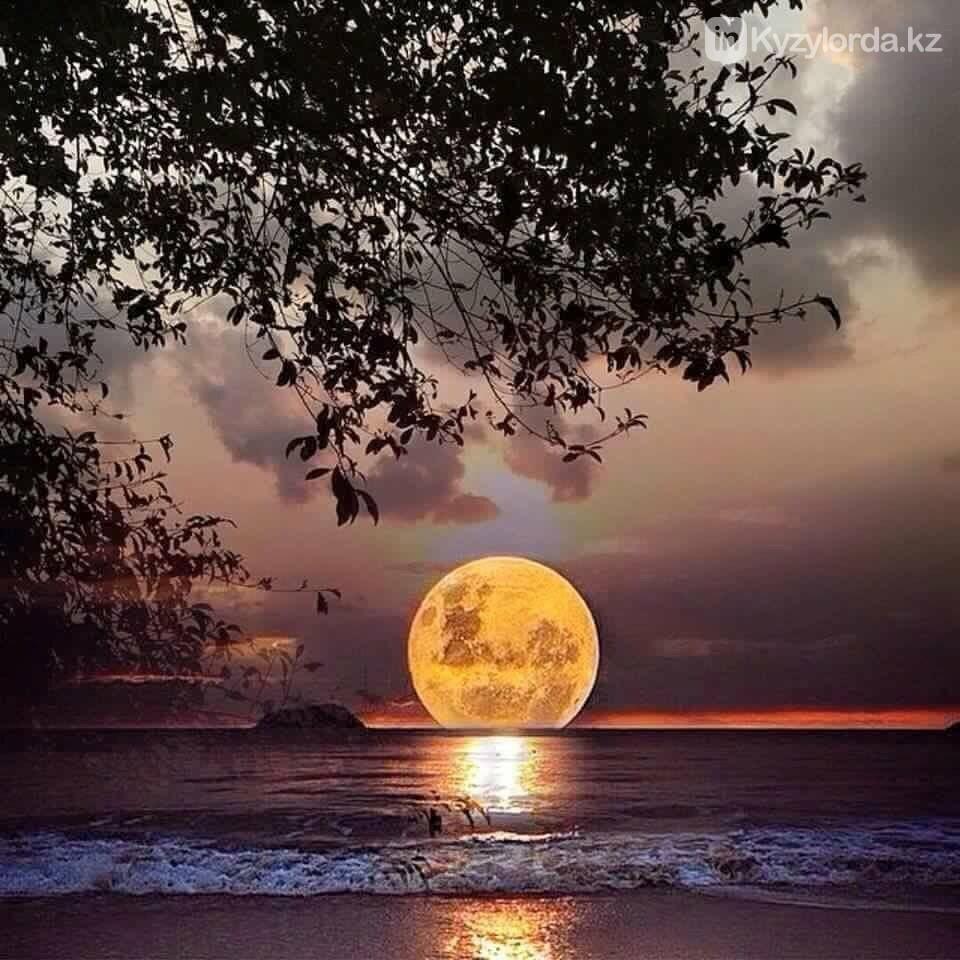 Сегодня луна подойдет к Земле на минимальное расстояние за этот год, фото-1