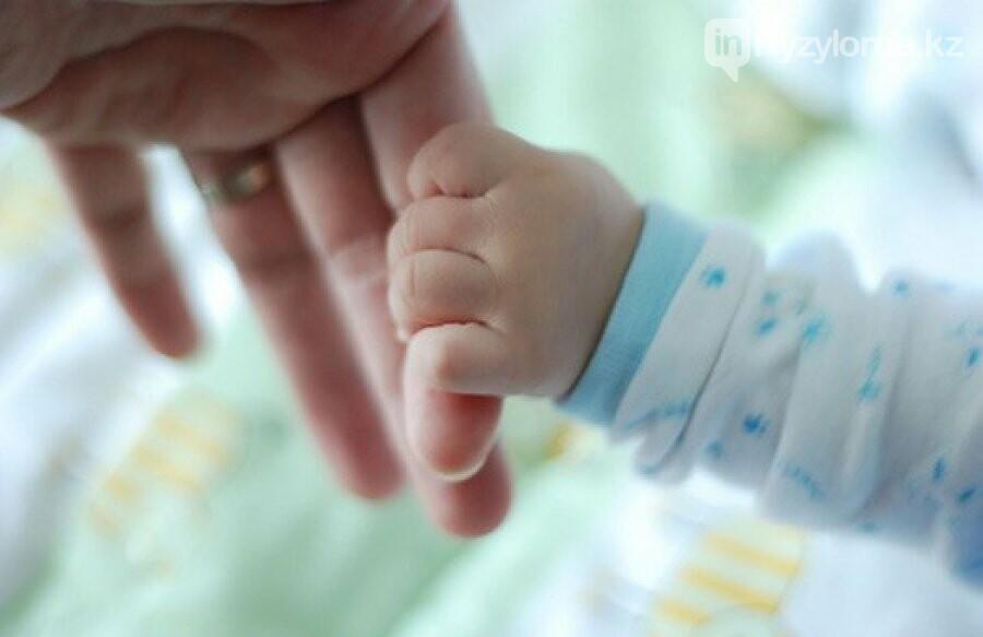 В Кызылординской области нет материнской смертности , фото-1